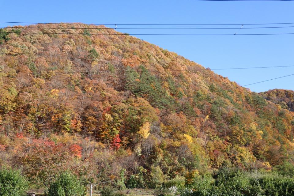 晩秋の山々